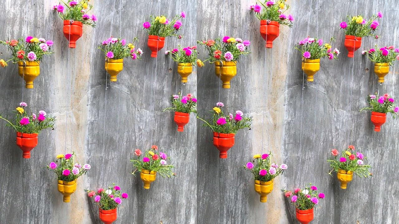 Chế tạo chai nhựa bỏ đi làm chậu hoa mười treo tường | chậu hoa 10 giờ - YouTube