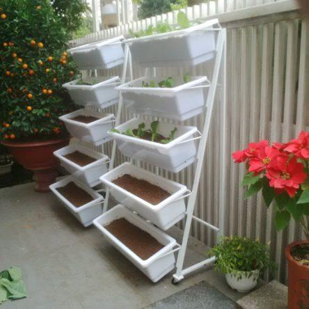 Top 10 Xưởng sản xuất khay trồng rau sạch uy tín